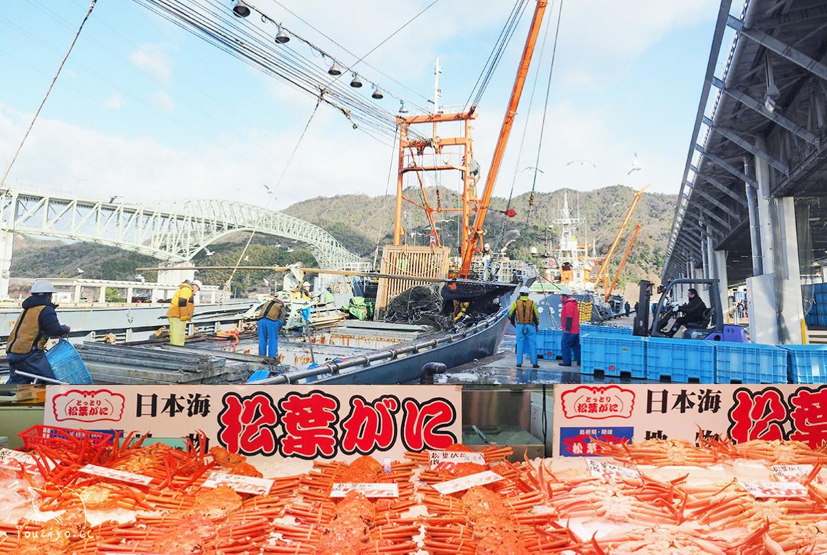 烏取境港漁市見學新體驗 & 境港水產直賣中心 產地直送新鮮松葉蟹